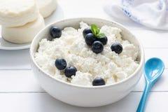 Ricotta, formaggio degli agricoltori o tvorog in ciotola bianca con i mirtilli freschi Fotografie Stock