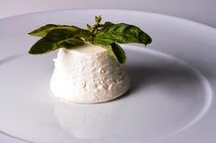 Ricotta italiano del queso Foto de archivo libre de regalías