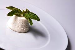 Ricotta italien de fromage Image libre de droits