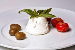 Ricotta italien de fromage Photos libres de droits