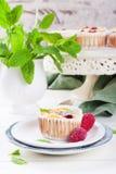 Ricotta mini cheesecake with fresh raspberries Royalty Free Stock Photos