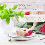 Ricotta mini cheesecake with fresh raspberries Stock Photography