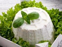 Ricotta mit Kopfsalat des Basilikums e lizenzfreies stockbild