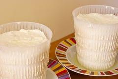 Ricotta, queijo italiano Fotografia de Stock Royalty Free