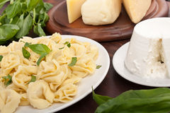 Ricotta and Spinach Tortellini Royalty Free Stock Photos