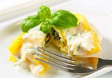 Ricotta and spinach tortelloni with cream sauce and Parmesan Stock Image
