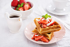 Ricotta waffles with strawberry Stock Image