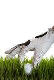 Ricupero della sfera di golf immagini stock