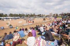Rid- hästshowbanhoppning Royaltyfria Bilder