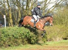 Rid- sport: hästbanhoppning Arkivbild