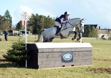 Rid- sport: hästbanhoppning Royaltyfri Fotografi