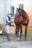 Rid- tvagning för ung tonårs- dam hennes bruna häst i dusch Royaltyfri Fotografi