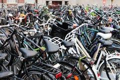 Rida en cykel i Amsterdam royaltyfri fotografi