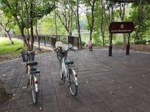 Rida en cykel i trädgården Arkivfoton