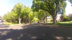 Rida en cykel på ett frodigt och grönskande träd fodrade gatan arkivfilmer