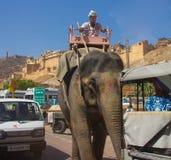 Rida en elefant på gatorna av Indien royaltyfri fotografi