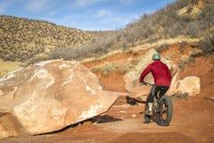 Rida en fet cykel på bergökenslinga Arkivbild