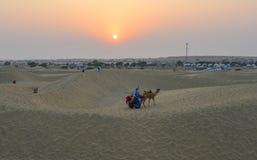 Rida kamlet p? den Thar ?knen i Jaisalmer, Indien royaltyfri bild