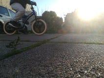 Rida min cykel Royaltyfria Bilder