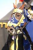 riddare för 2 häst royaltyfri bild