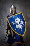 Riddare med ett svärd och en sköld arkivfoto
