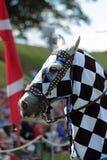 Riddare på hästrygg Arkivbilder