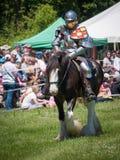 Riddare på hästrygg Arkivbild
