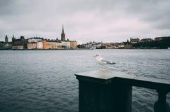 Riddarholmen在斯德哥尔摩 免版税图库摄影
