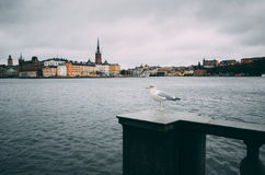 Riddarholmen στη Στοκχόλμη Στοκ φωτογραφία με δικαίωμα ελεύθερης χρήσης
