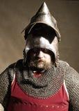 Ridder Royalty-vrije Stock Foto's