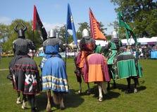 Ridders op Paarden Stock Fotografie
