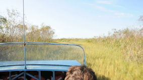 Ride with airboat through everglades stock video