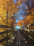 A ride back up. Fall colors along a track back up the mountain in Duluth Minnesota royalty free stock photo