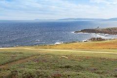 Ride on the coast of A Coruña.Pontevedra. Grass, flowers and ride on the coast of Pontevedra. A Coruña. Galicia Royalty Free Stock Photo