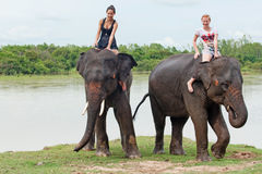 Ride an elephant Royalty Free Stock Images