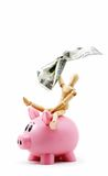 Ride 'em Piggy Bank! Stock Photos