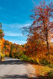 Ride through fall foliage forest. Beautiful sunny day in mountains Stock Image