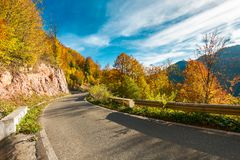 Ride through fall foliage forest. Beautiful sunny day in mountains royalty free stock photography