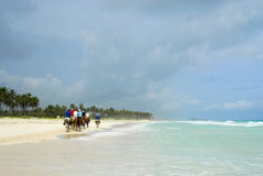 Ride on horseback on the beach Royalty Free Stock Image