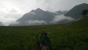 Ride on horseback in the beautiful fields of the Altai Republic. Journey on a cloudy Altai. Beautiful lush grass and clouds