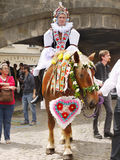 Young man on horse, Cultural Celebration in Prague  Royalty Free Stock Photography