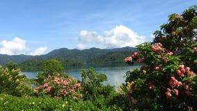 Khao Sok National Park at Khao Lak Royalty Free Stock Images