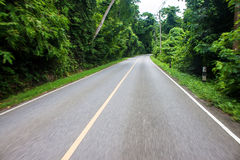 Ride on the road in Khao Yai National Park Royalty Free Stock Photography