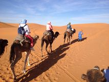 Ride into the Sahara Royalty Free Stock Photography