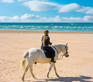 Ride by a sea royalty free stock photo