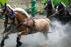 Ride through water Stock Photography