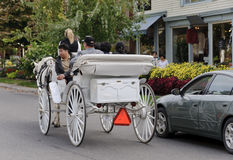 Ride in a white  horse carriage Stock Image