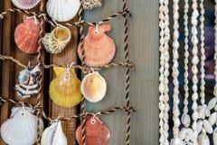 Rideaux de belles coquilles colorées de mer de la mer Photographie stock