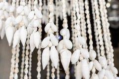 Rideaux de belles coquilles colorées de mer de la mer Photos stock