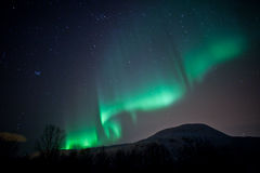 Rideaux en lumières nordiques (l'aurore Borealis) Image libre de droits